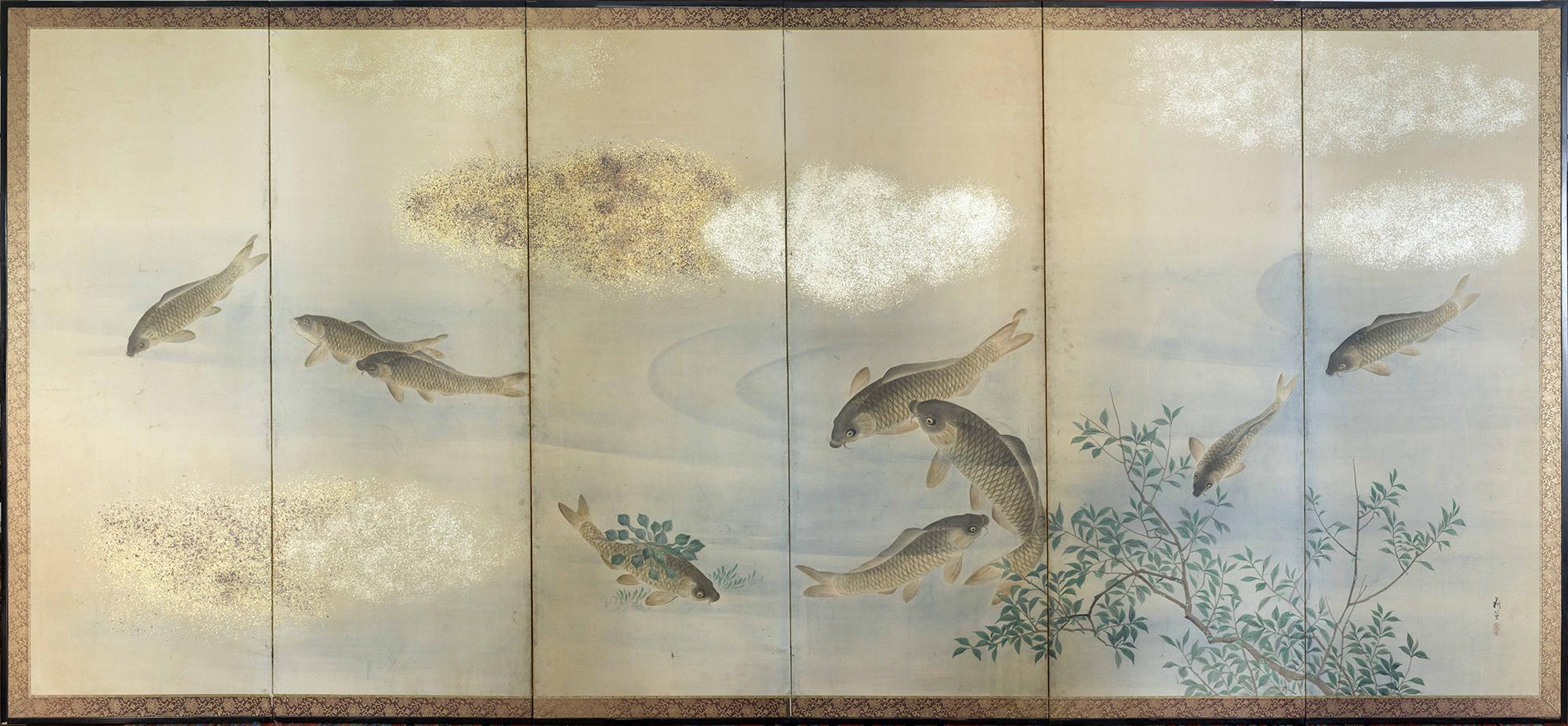 carpe giapponesi
